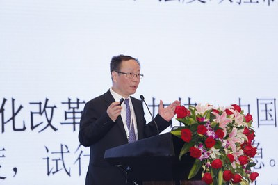 Wang Yiming, Vice President, Development Research Center of the State Council