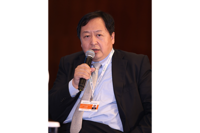 Wang Zhongying, Deputy Director General, Energy Research Institute of the National Development and Reform Commission