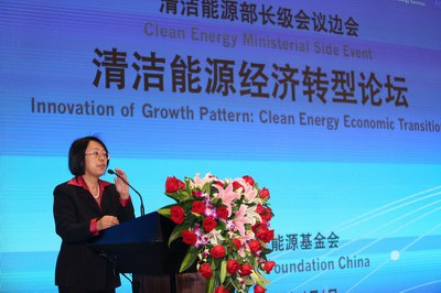 世界银行高级能源专家王晓东