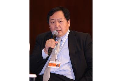 国家发展和改革委员会能源研究所副所长王仲颖