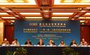 """中国提升清洁能源国际领导力将助推""""一带一路"""""""